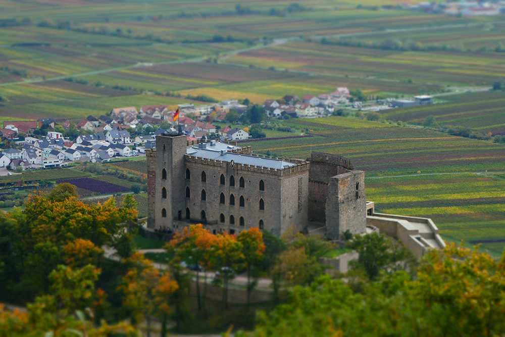 Kalmit & Hambacher Schloss