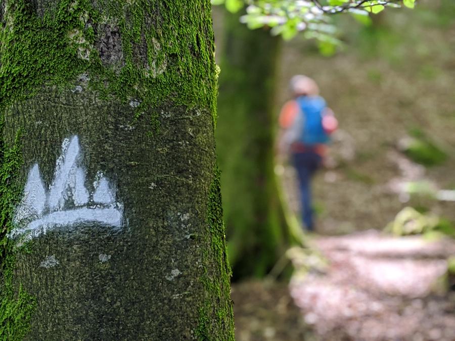 Albtal Abenteuer Track (Etappe1)