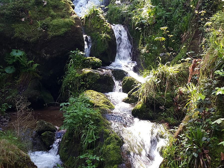 Gertelbach Wasserfälle über Schwanenwasen
