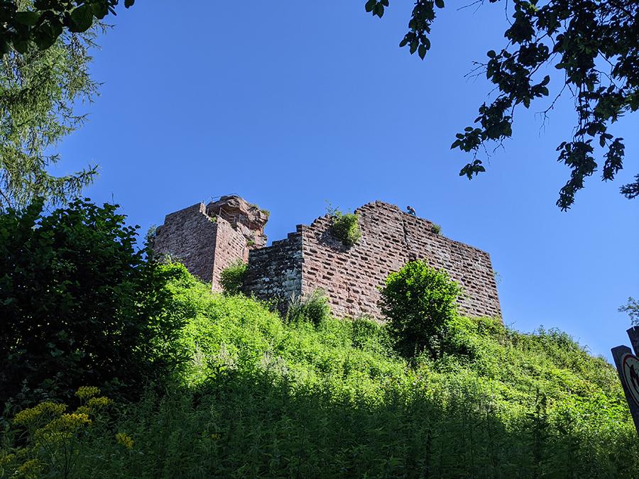 5-Burgen Raubzug in der Südpfalz…